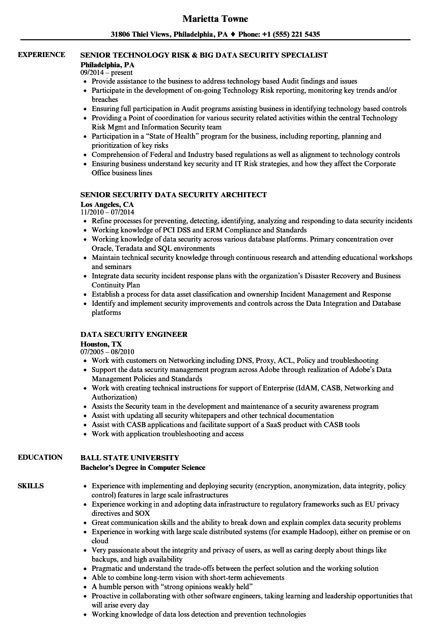 Download Data Security Resume Sample As Image File  Sample Security Resume
