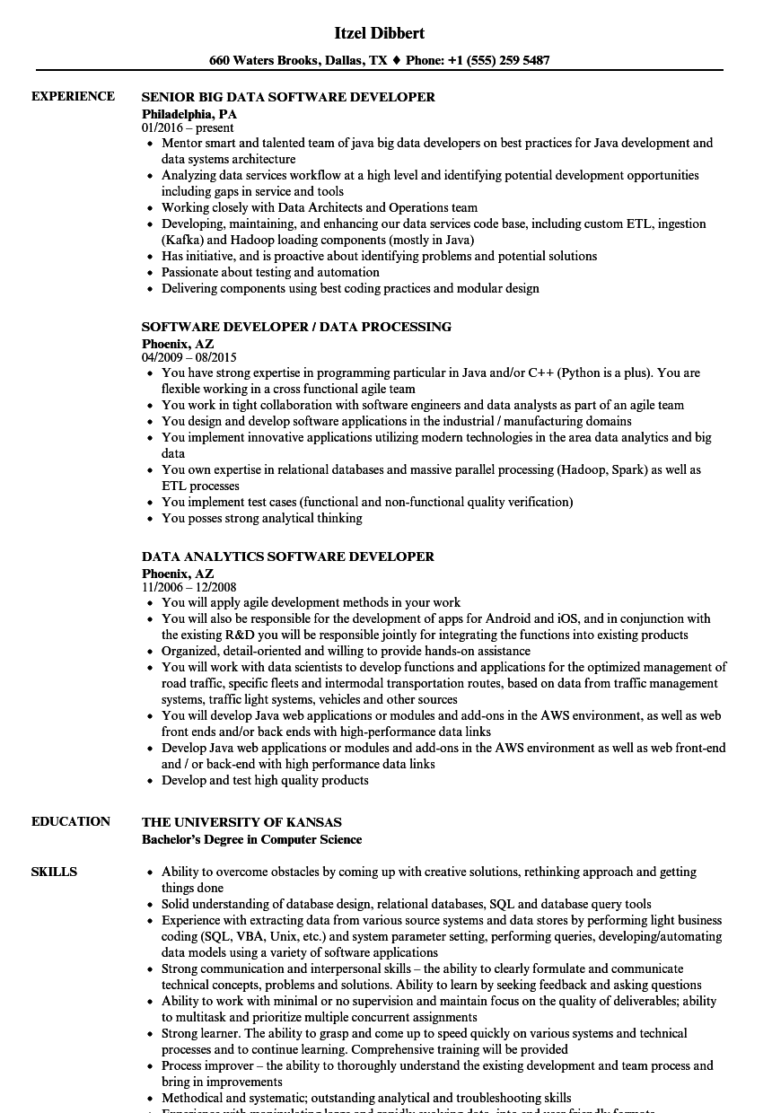 Download Data Software Developer Resume Sample As Image File