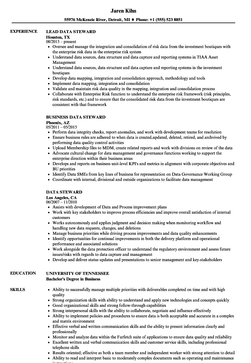Data Steward Resume Samples | Velvet Jobs