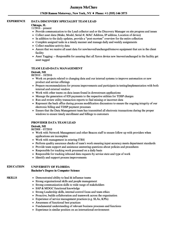data team lead resume samples
