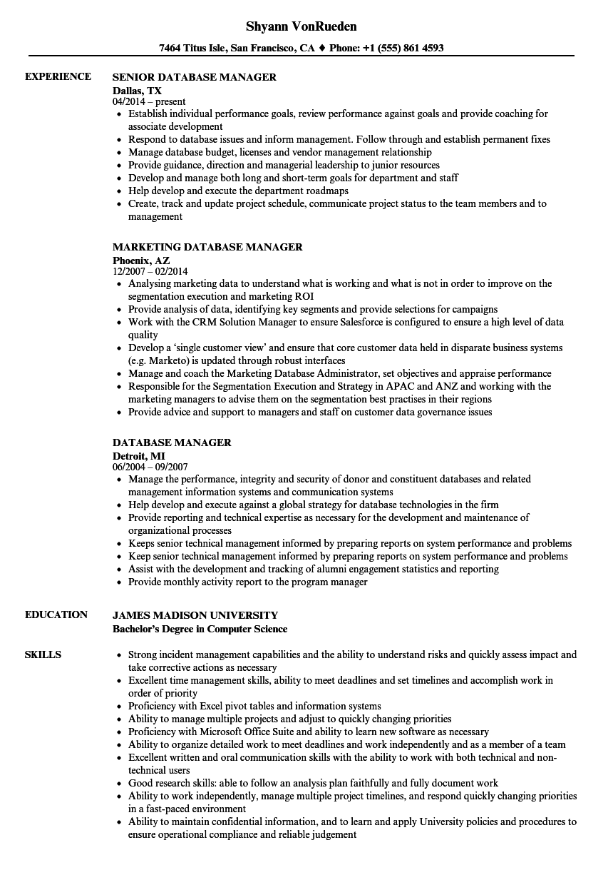Database Manager Resume Samples | Velvet Jobs