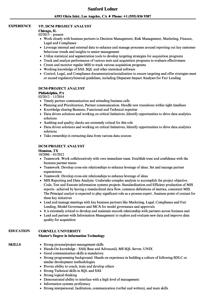 dcm project analyst resume samples