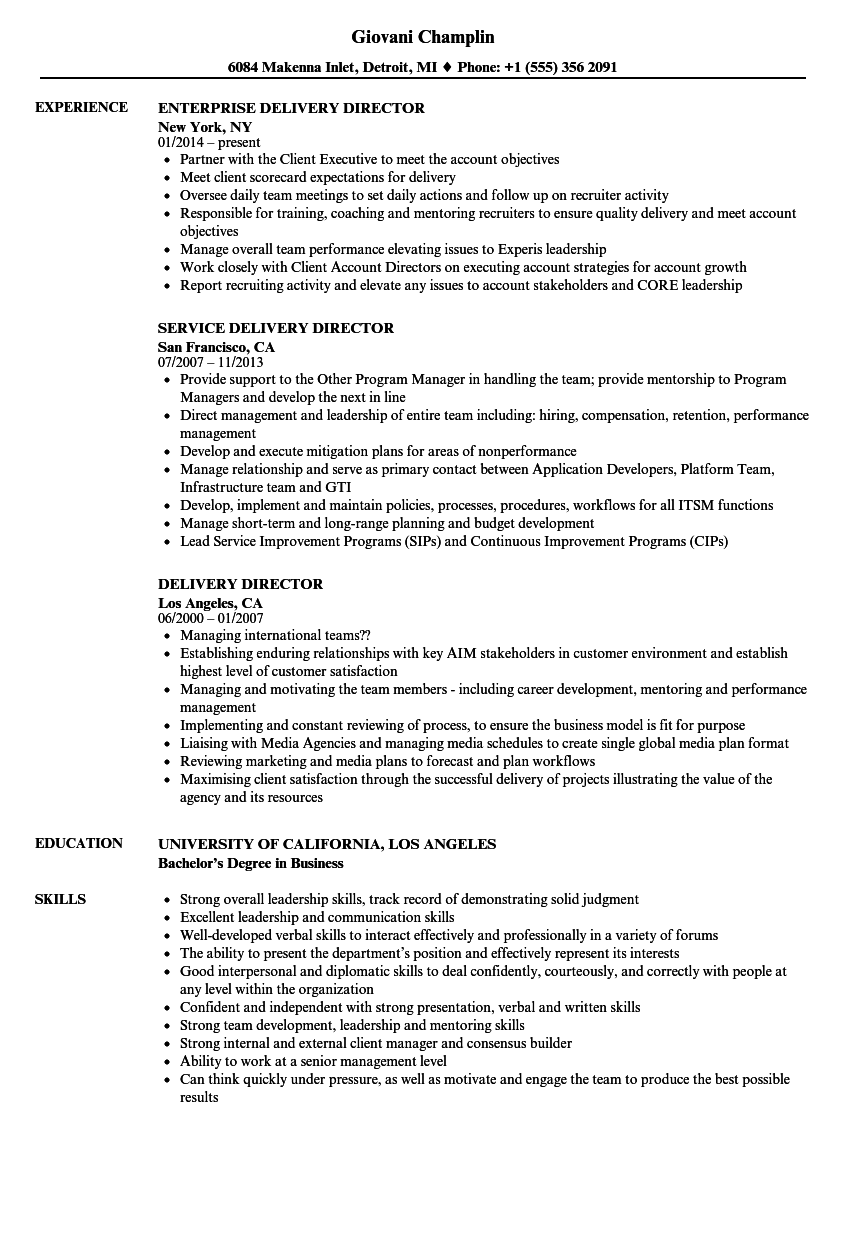 service delivery resume - schlumberger