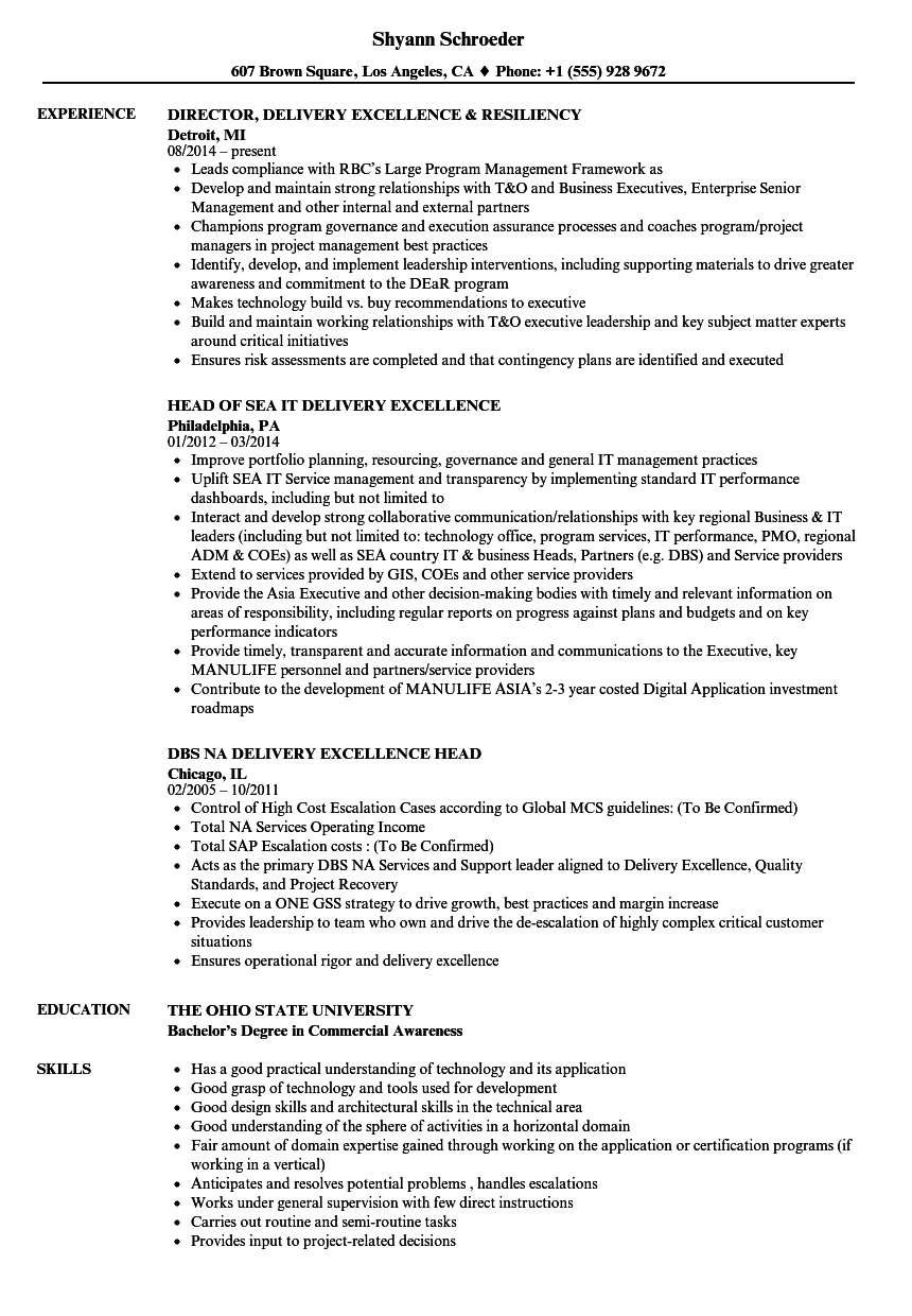 resume Delivery Head Resume delivery excellence resume samples velvet jobs download sample as image file