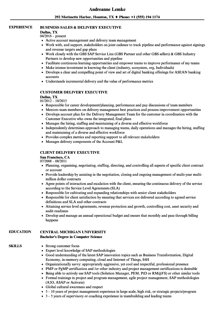 delivery executive resume samples