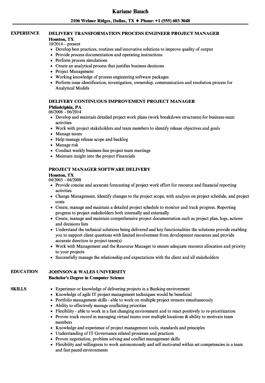 Download Delivery Manager / Project Manager Resume Sample As Image File