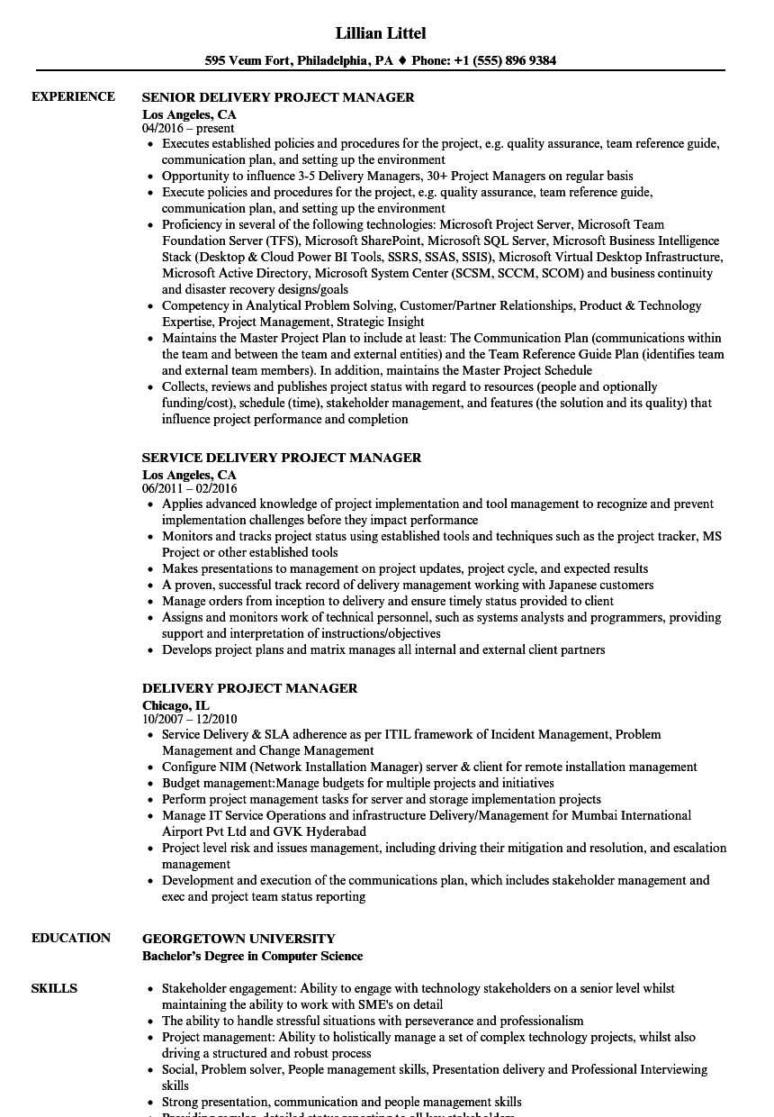 delivery project manager resume samples