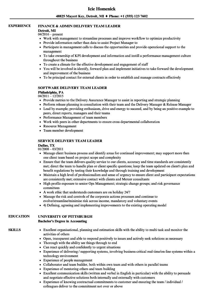 download delivery team leader resume sample as image file