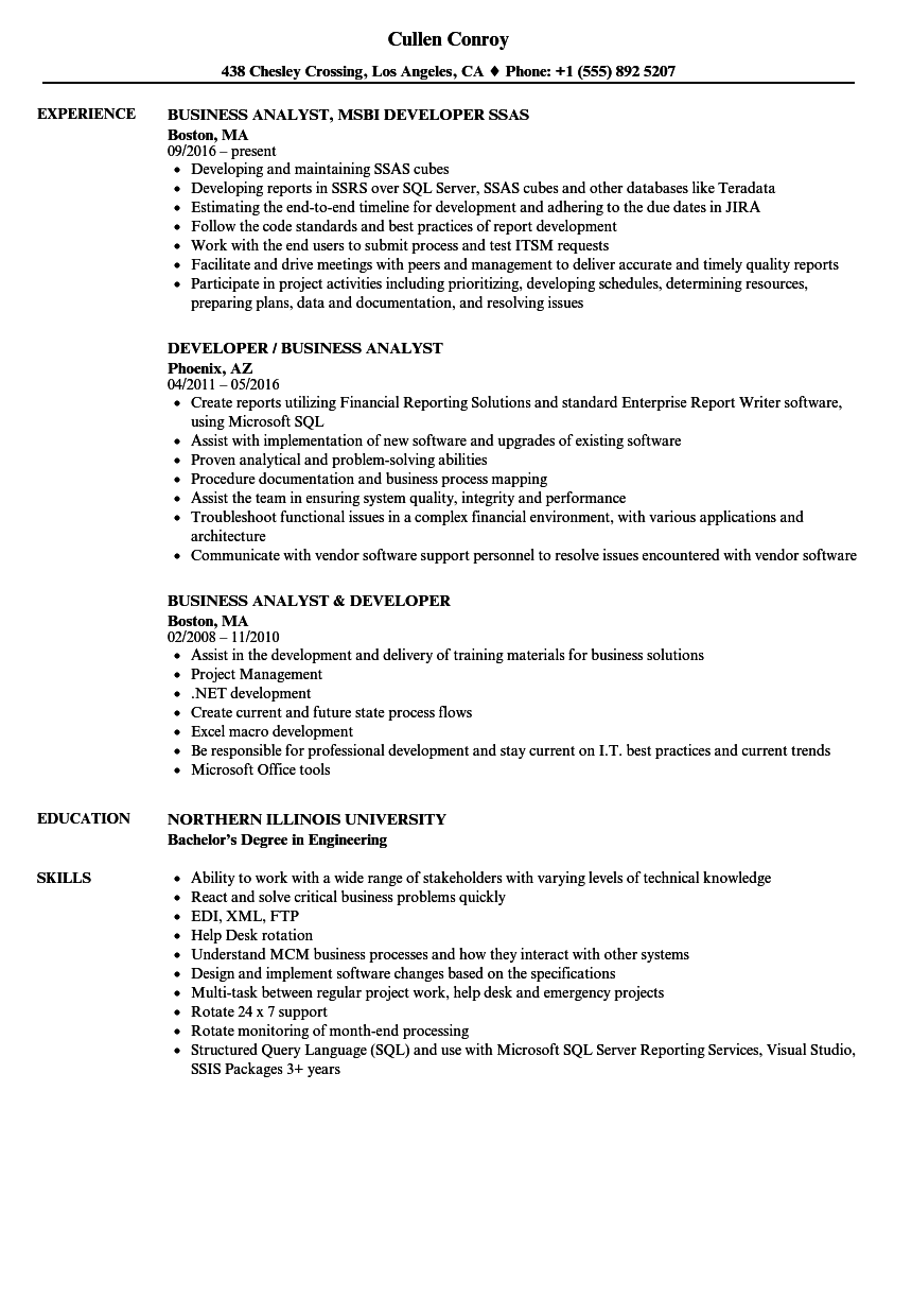 developer    business analyst resume samples