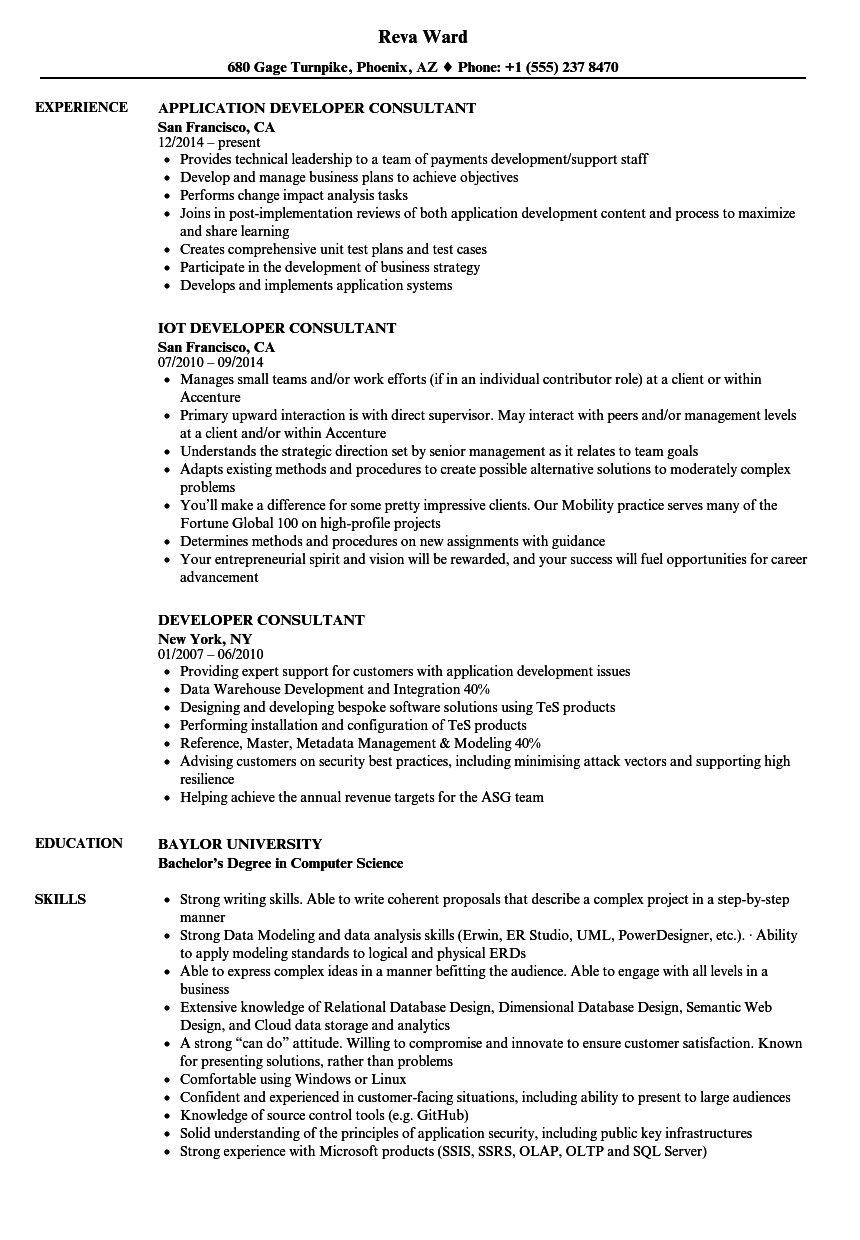 developer consultant resume samples