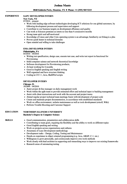 Developer Intern Resume Samples | Velvet Jobs