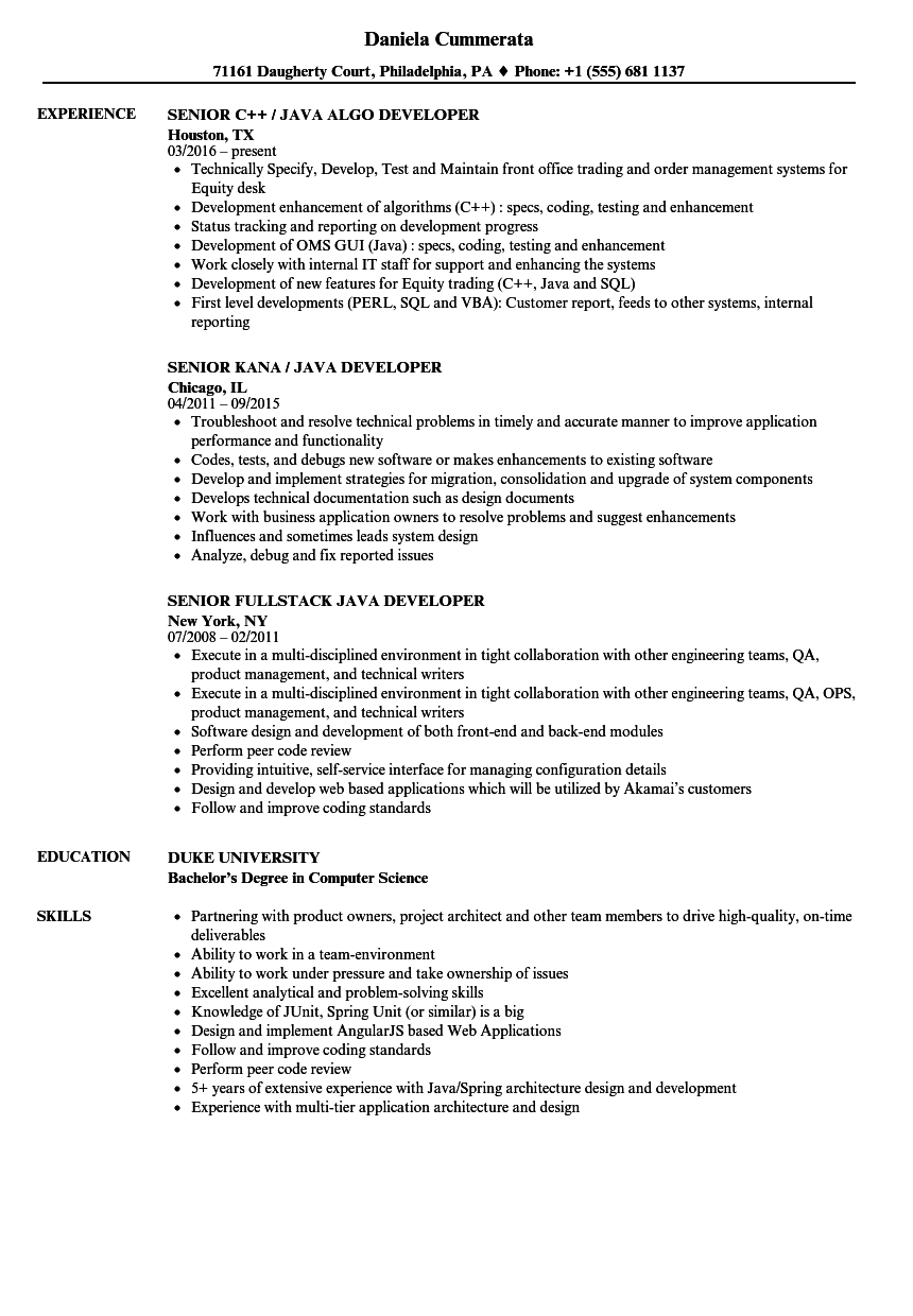 Developer Java Senior Resume Samples | Velvet Jobs
