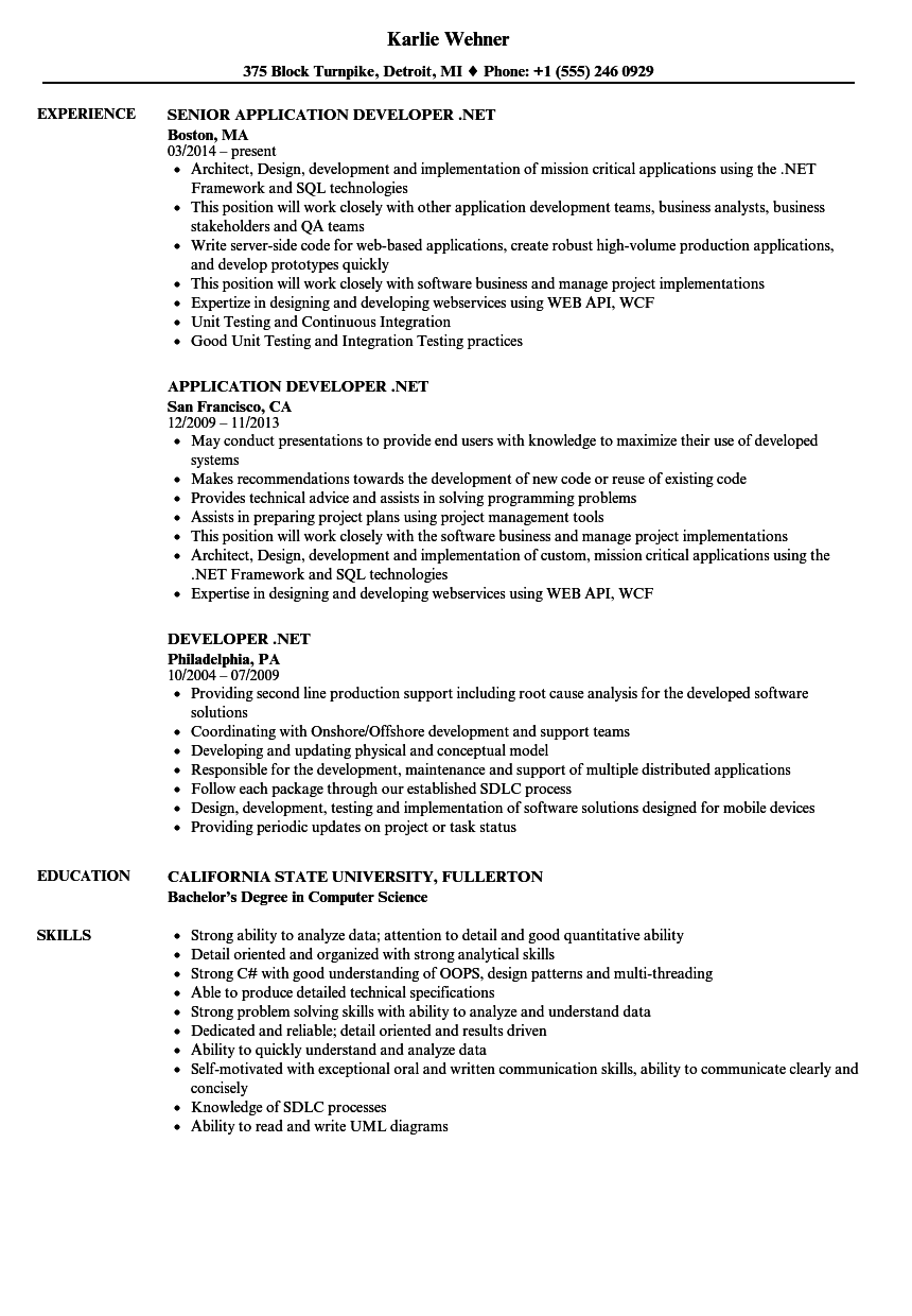 Developer Net Resume Samples Velvet Jobs