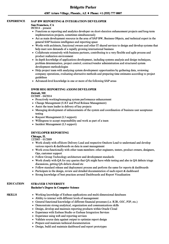 developer reporting resume samples