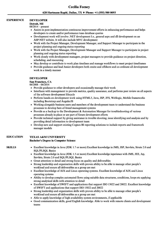 developer resume samples