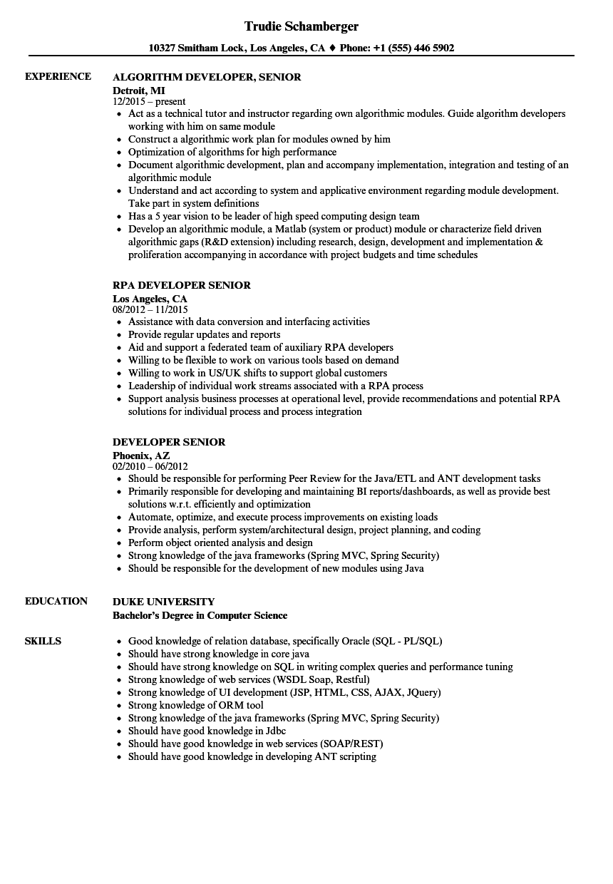 developer senior resume samples