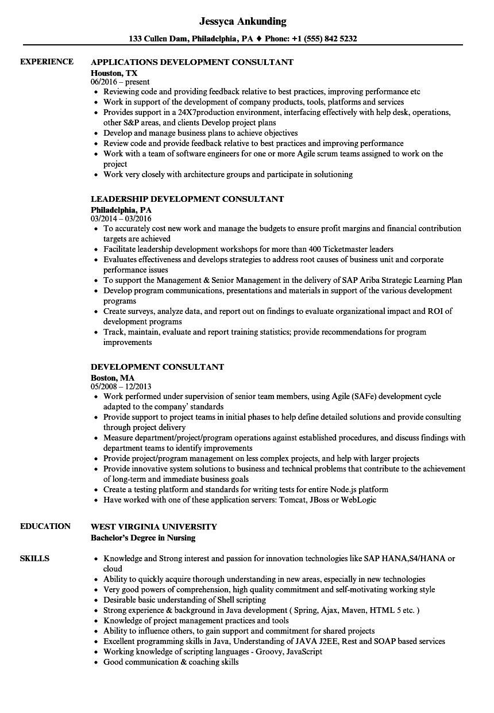 Development Consultant Resume Samples