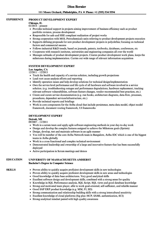 development expert resume samples