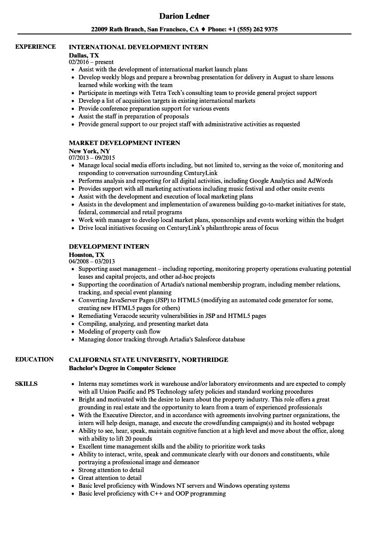 development intern resume samples