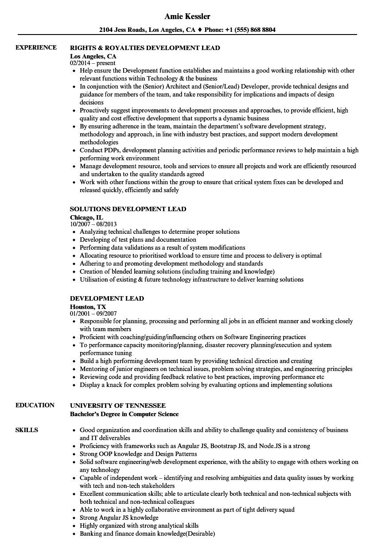 Development Lead Resume Samples | Velvet Jobs
