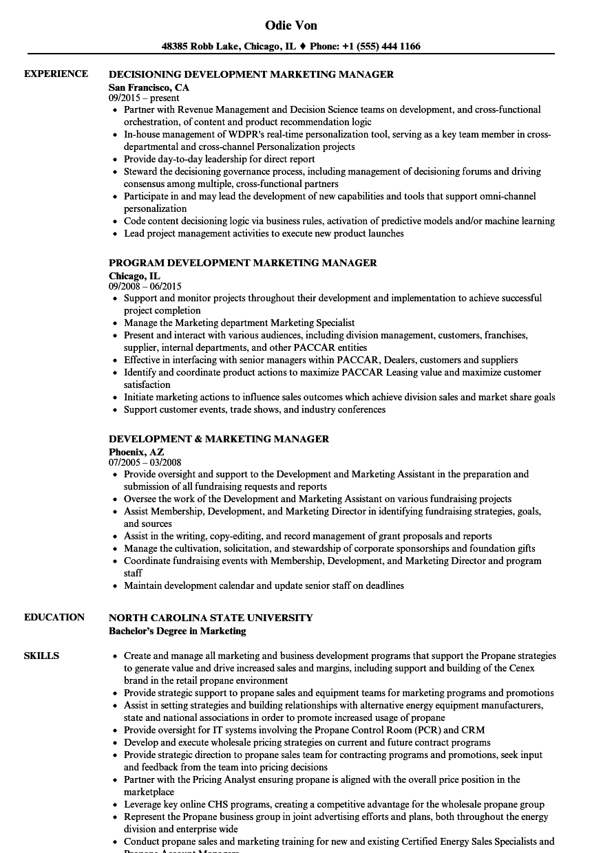 development marketing manager resume samples