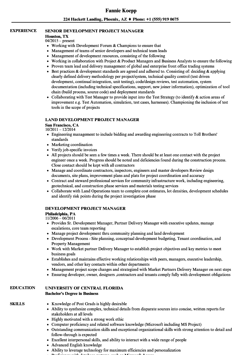 development project manager resume samples