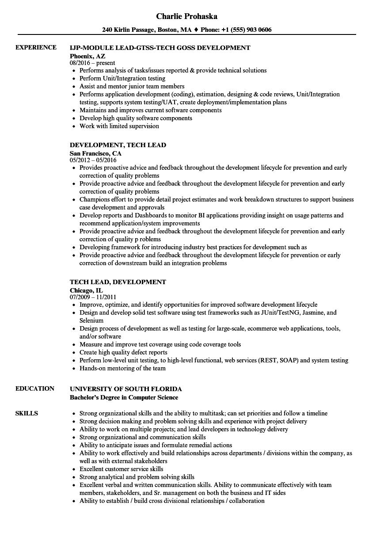 Development, Tech Lead Resume Samples | Velvet Jobs