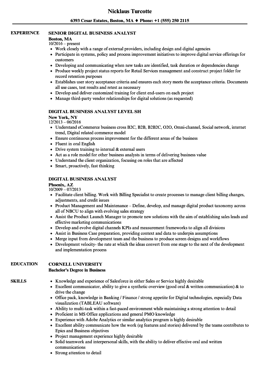download digital business analyst resume sample as image file - It Business Analyst Resume Sample