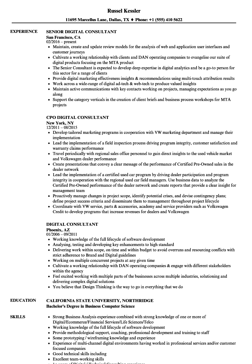 digital consultant resume samples