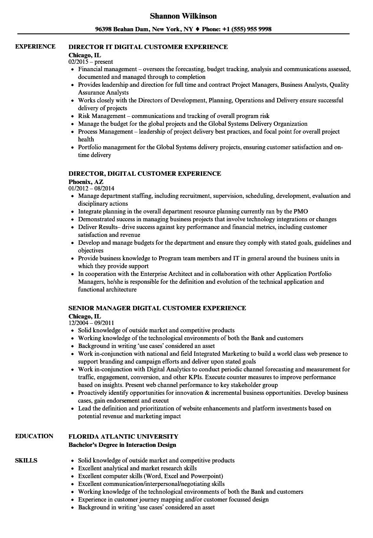 digital customer experience resume samples