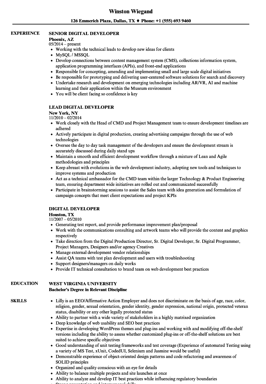Digital Developer Resume Samples | Velvet Jobs
