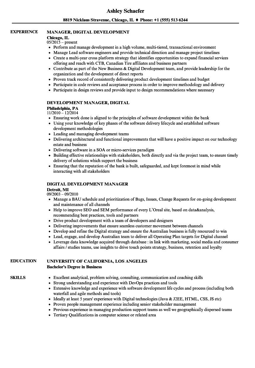Channel Partner Manager Resume