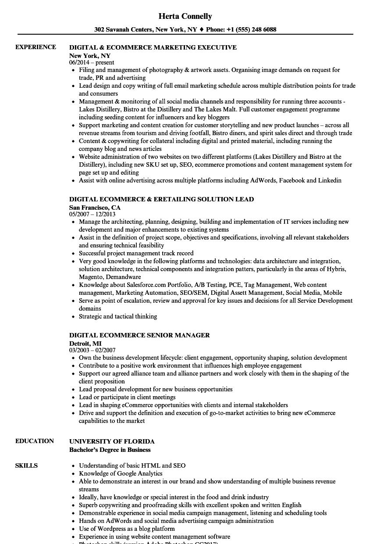 digital ecommerce resume samples
