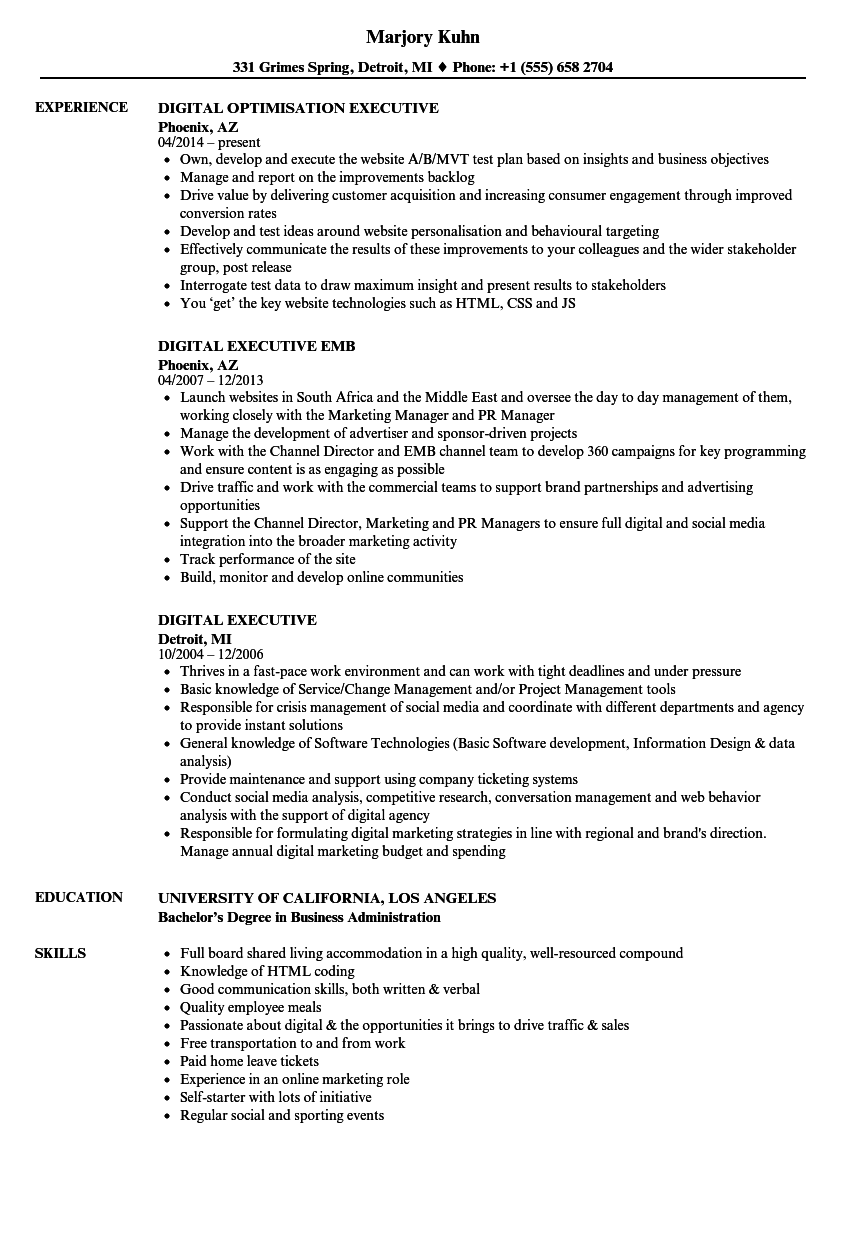 Download Digital Executive Resume Sample As Image File