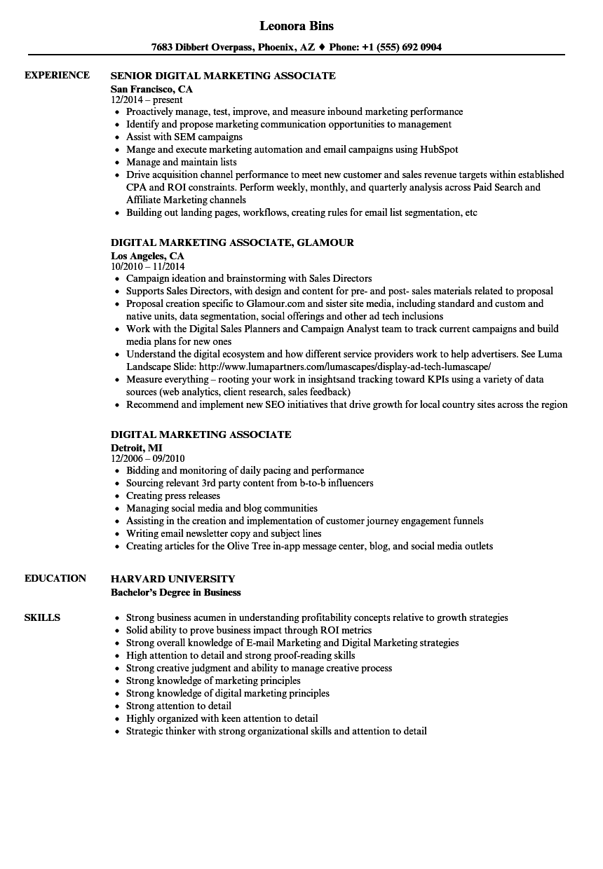 digital marketing  associate resume samples