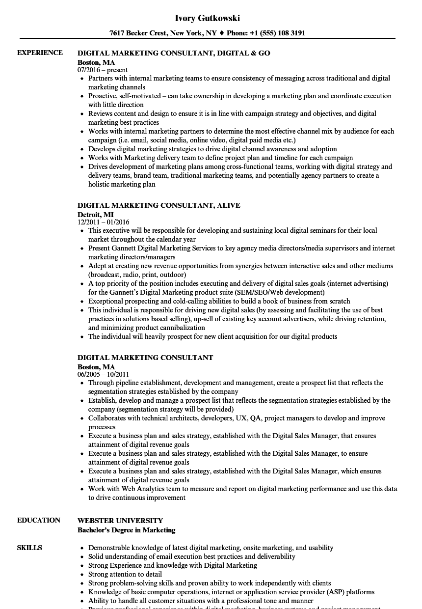 digital marketing consultant resume samples