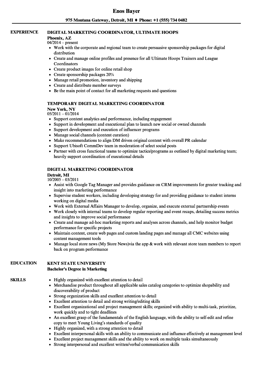 Digital Marketing Coordinator Resume Samples | Velvet Jobs