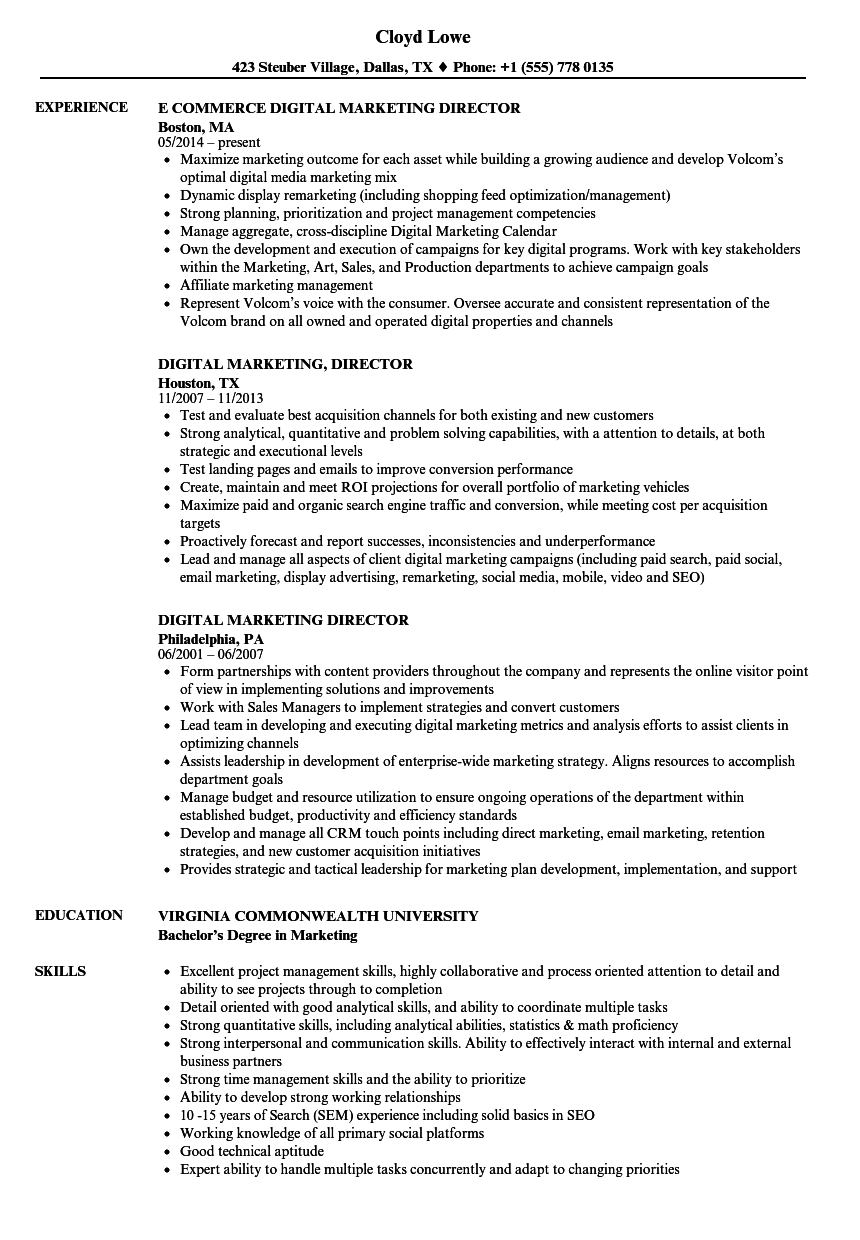 digital marketing director resume samples velvet jobs