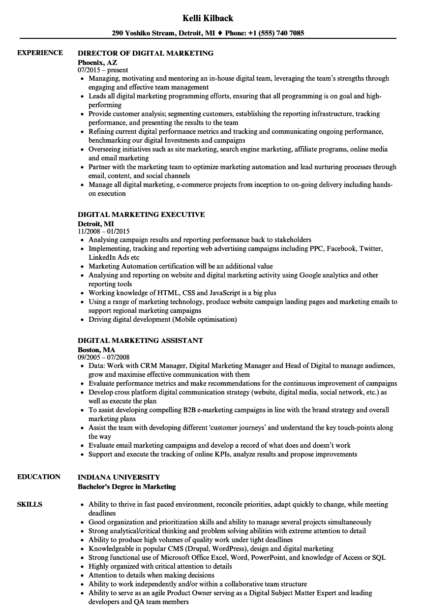 digital marketing resume samples velvet jobs