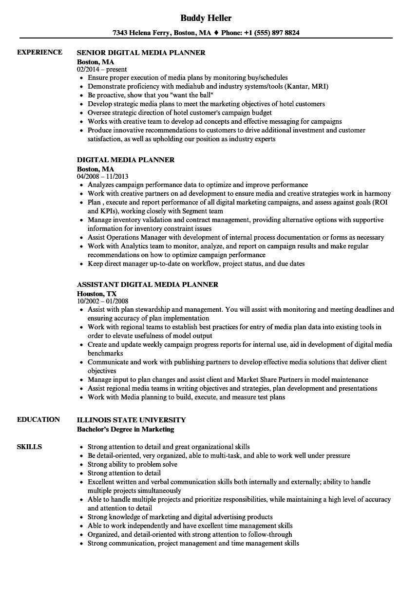Digital Media Planner Resume Samples Velvet Jobs