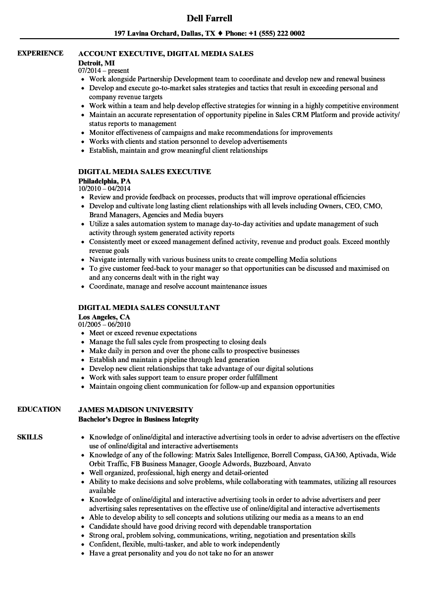 Download Digital Media Sales Resume Sample As Image File  Digital Media Resume