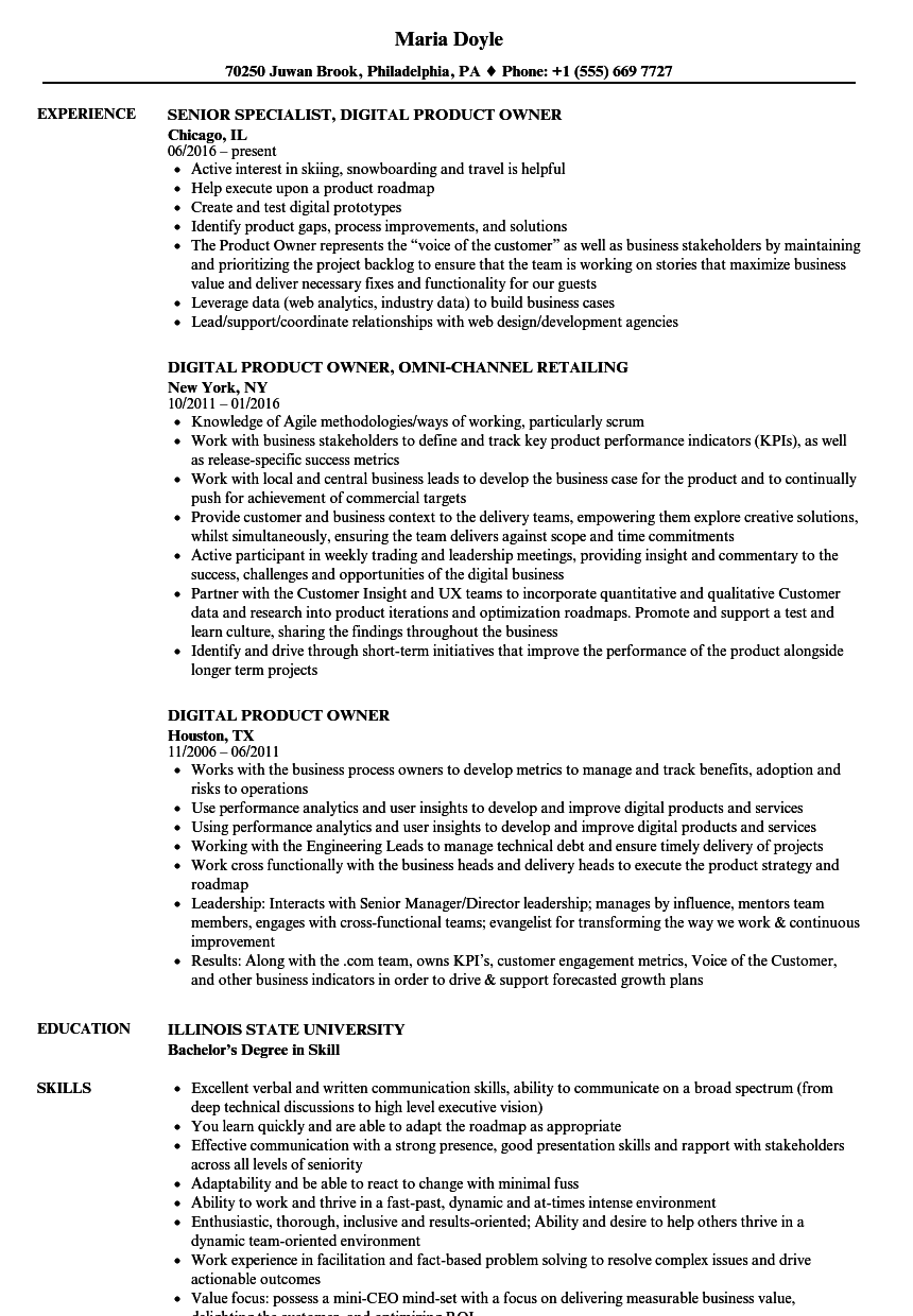 digital product owner resume samples velvet jobs