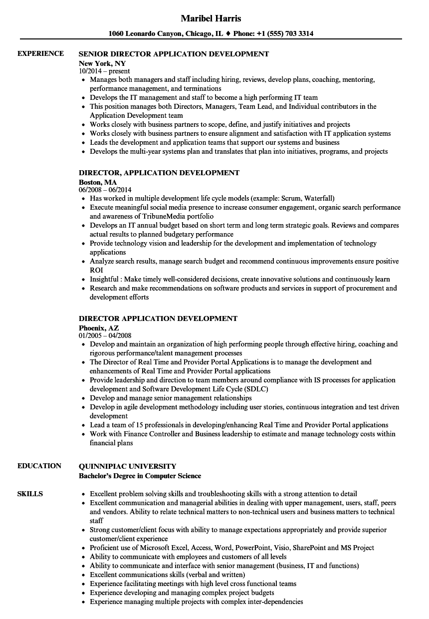 director  application development resume samples