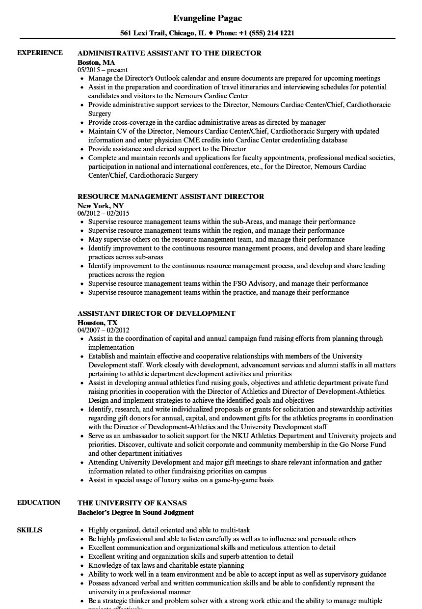 director assistant resume samples