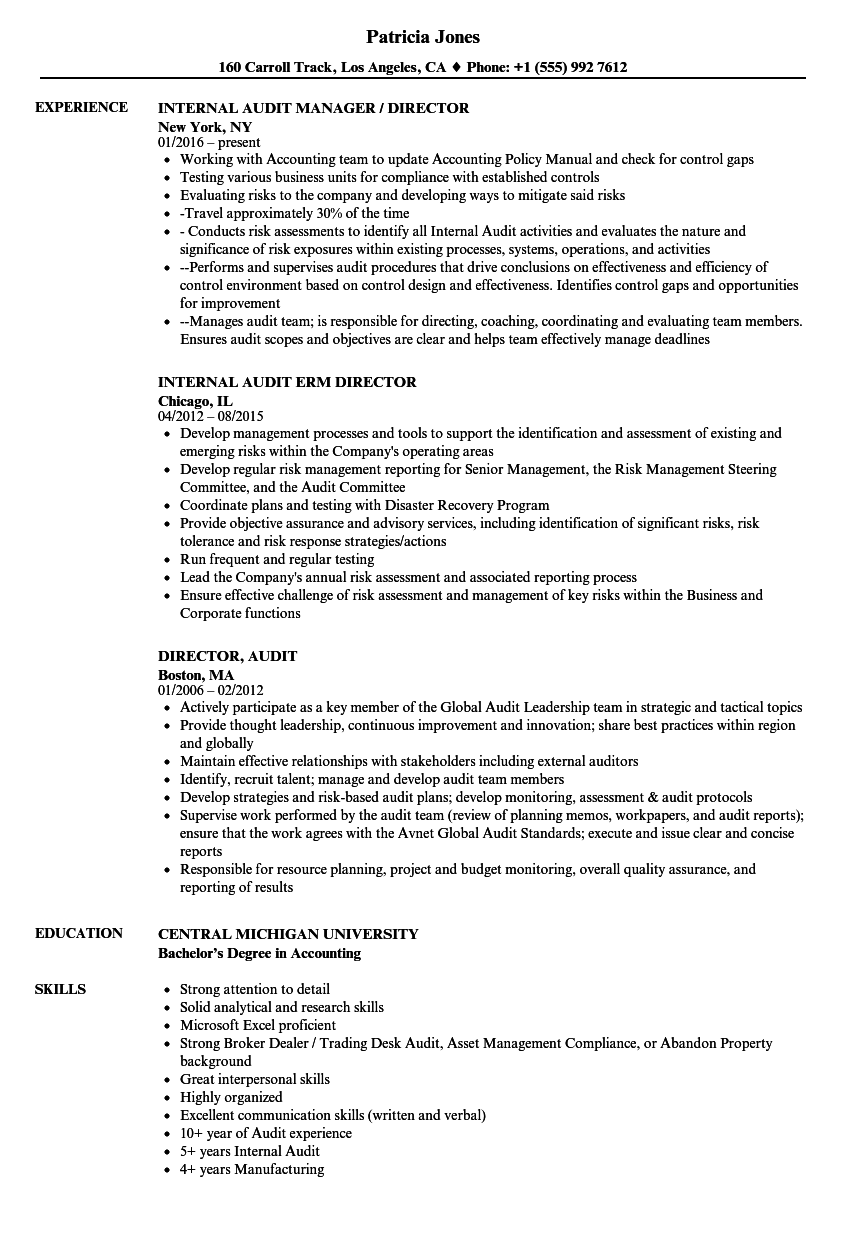 Director, Audit Resume Samples | Velvet Jobs