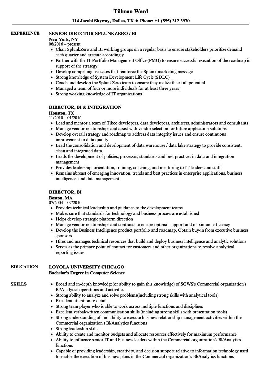 Director, BI Resume Samples | Velvet Jobs