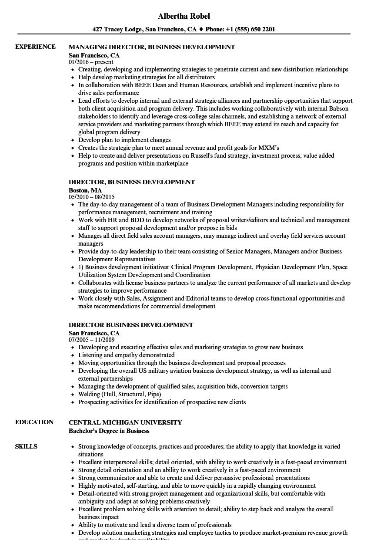 director  business development resume samples