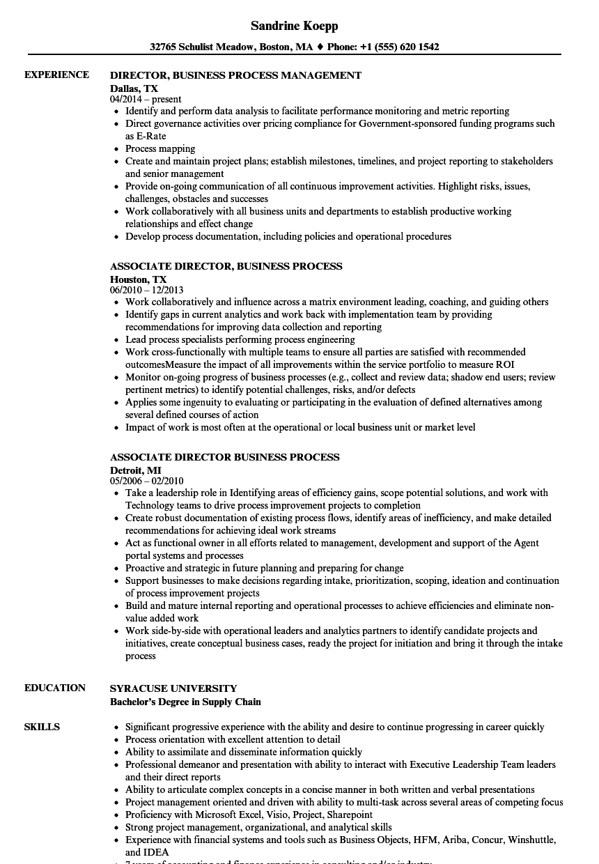 director  business process resume samples