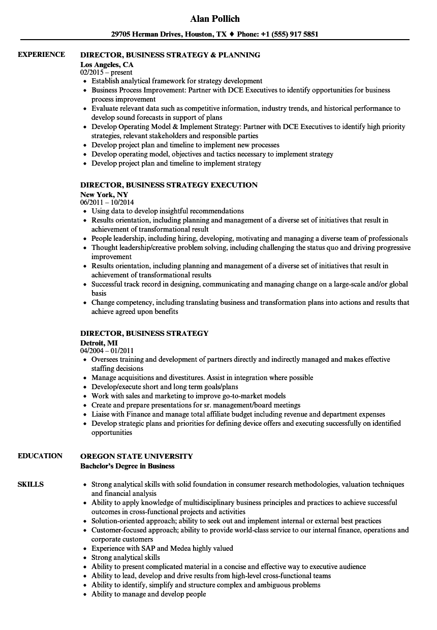 Director, Business Strategy Resume Samples | Velvet Jobs