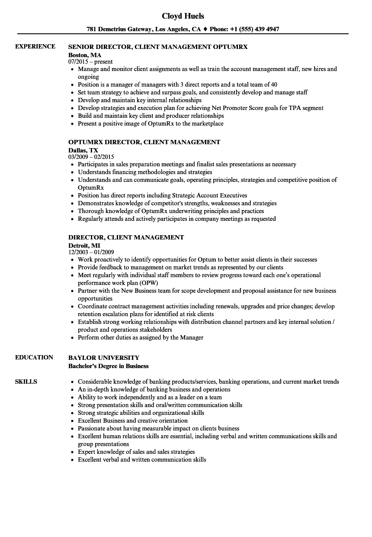 Director, Client Management Resume Samples | Velvet Jobs
